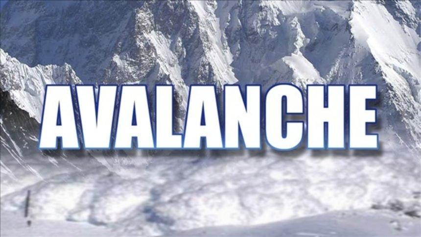 avalanche-logo-2-jpg_3563325_ver1.0_1280_720