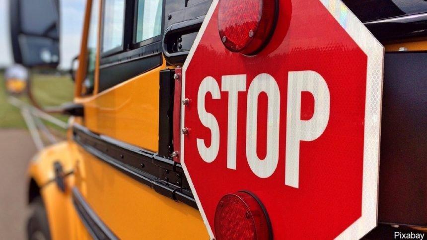 Stop school bus logo