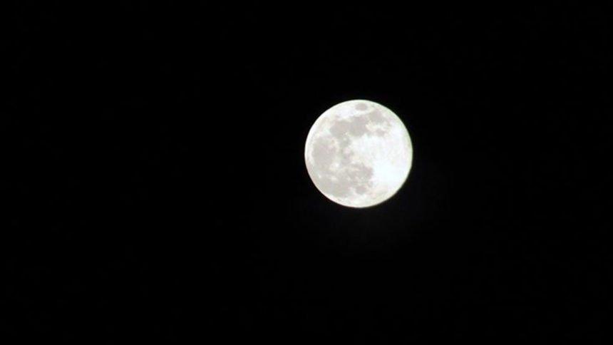 Super Pink Moon Rick Lamoreaux