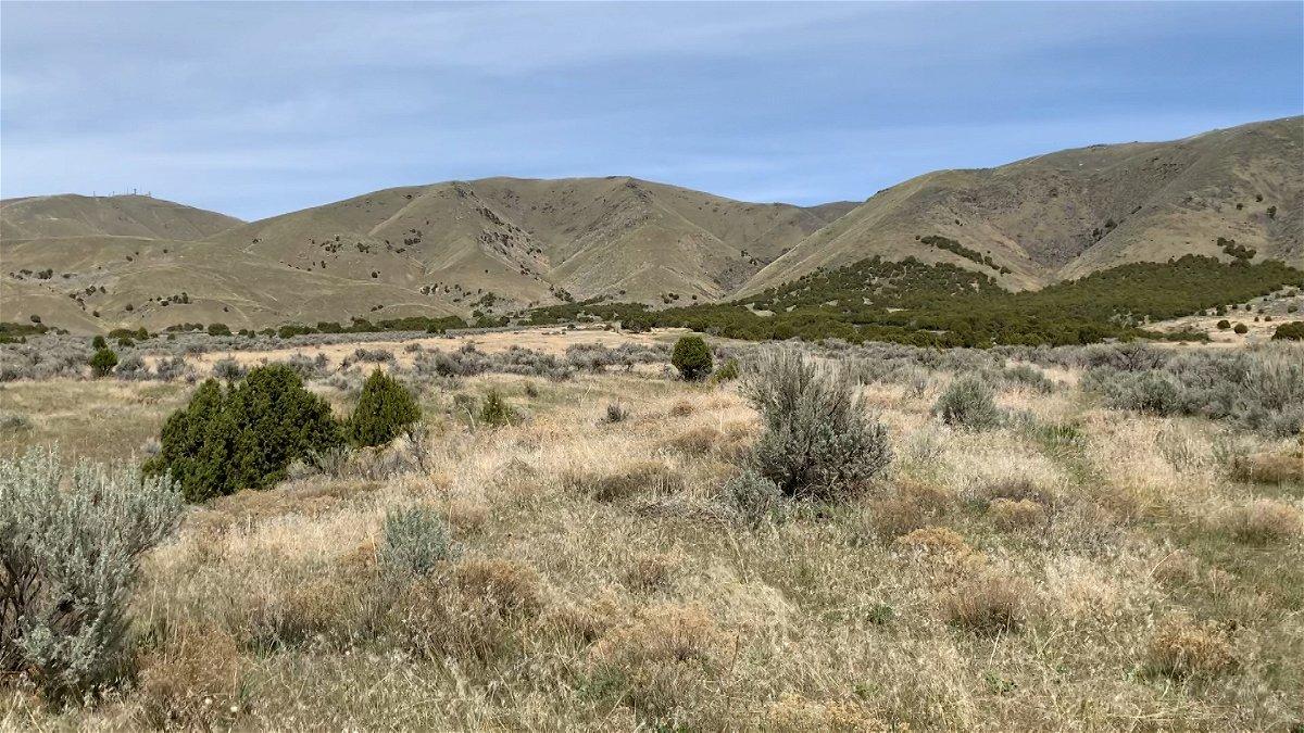 century heights preserve