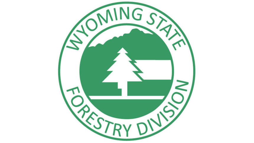 wyoming-state -forestry-division