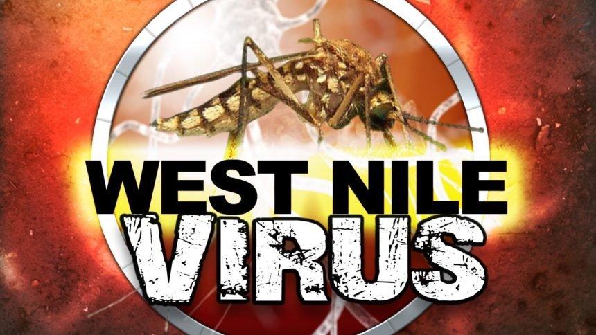 West Nile Virus logo image MGN Online