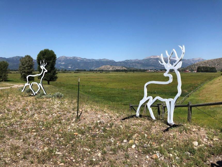 deer silhouette pair