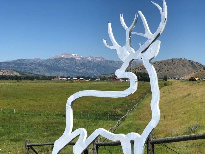 standing deer silhouette