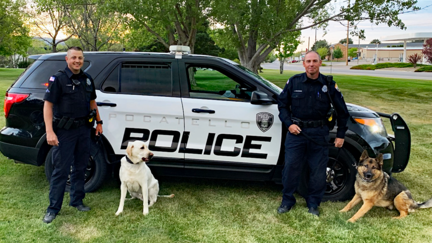 Frank, a Yellow Lab, with Officer Dane Eborn and Berrett, a German Shepherd, with Corporal Joel Weinheimer.