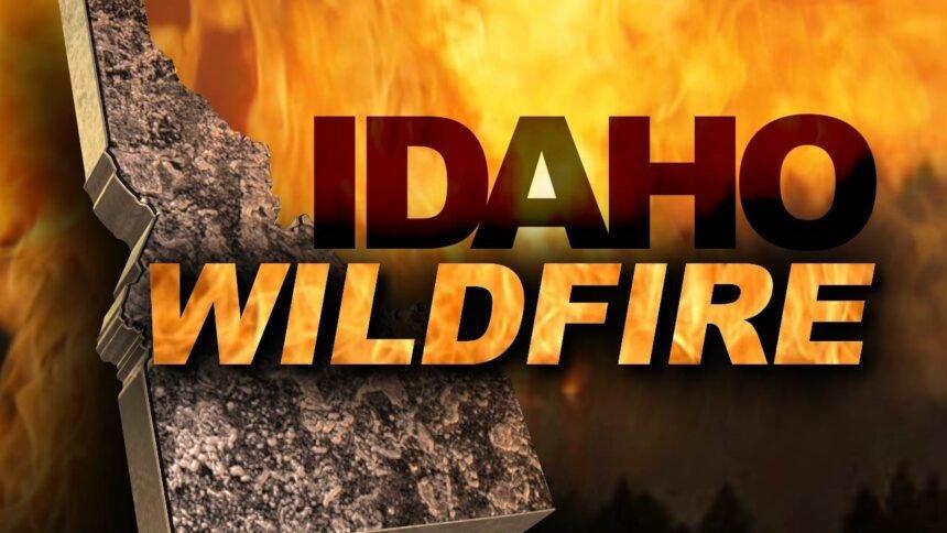 Idaho Wildfire logo_MGN Online_03922