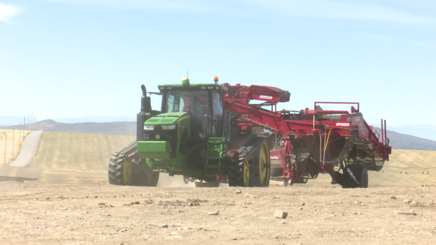 Potato harvest tractor in field logo image