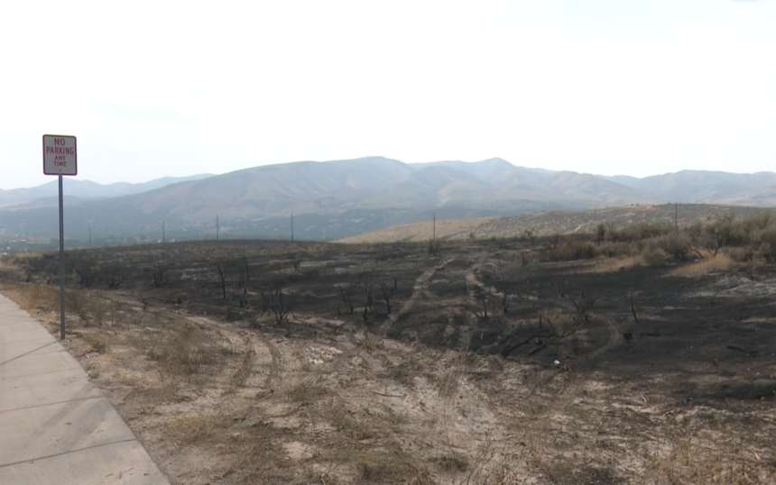 Aftermath from Monday's brush fire across from Alvin Ricken Drive