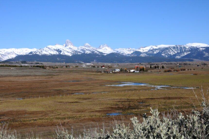 Spring Creek Wetland TRLT 9-2020