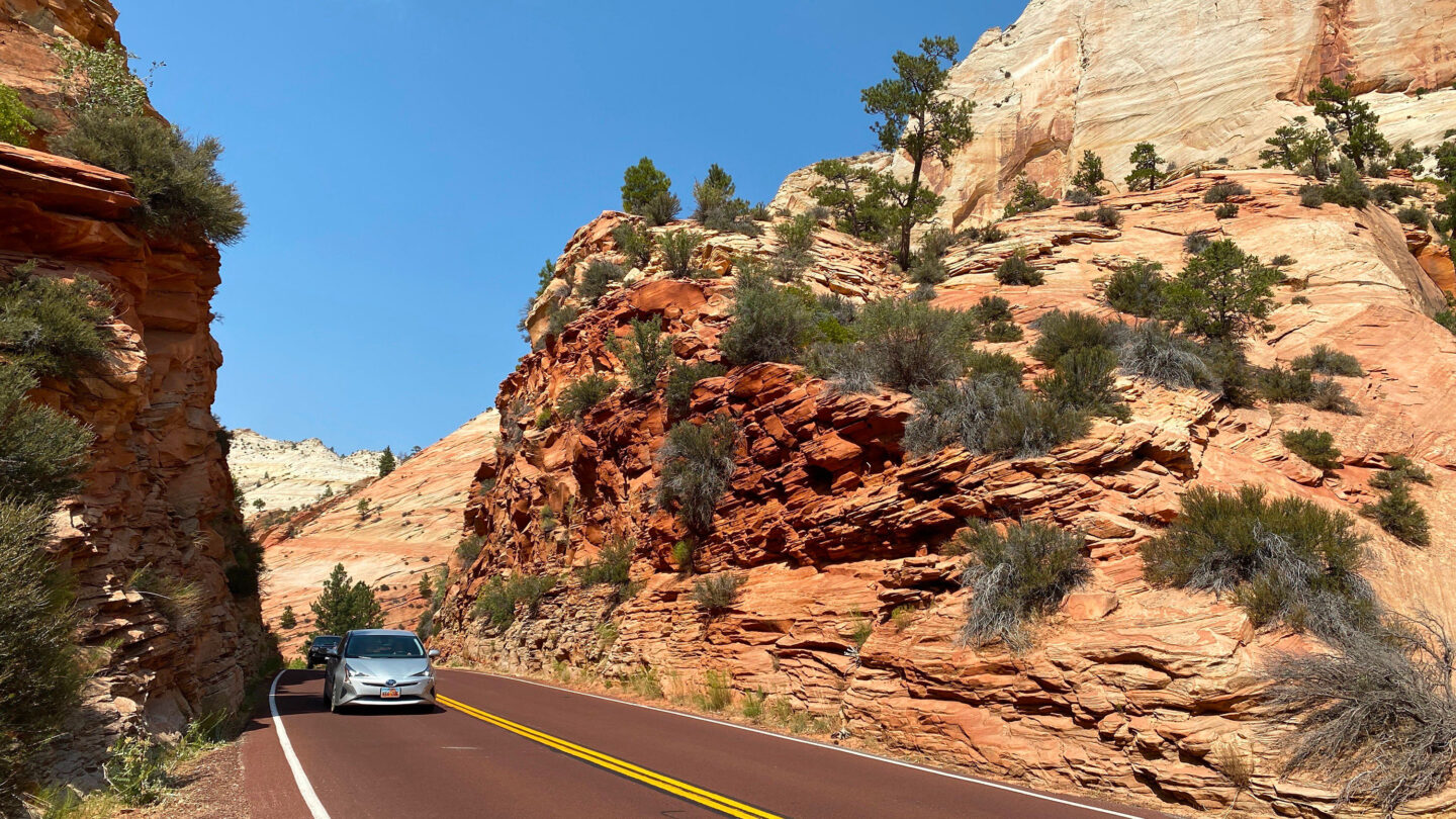 The scenic road winds through Zion National park, in Utah on August 26, 2020. (Photo by Daniel SLIM / AFP) (Photo by DANIEL SLIM/AFP via Getty Images)