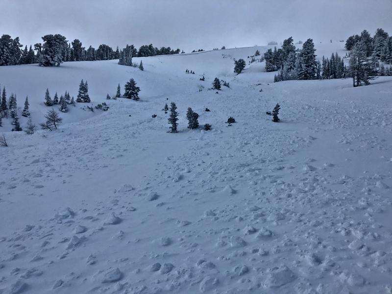 Preliminary Report Released for Sherman Peak Avalanche Fatality1