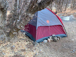 Utah woman missing for 5 months found living in tent1