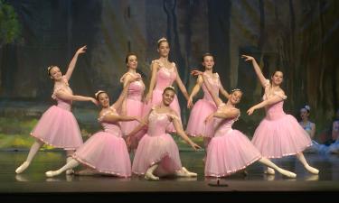 Dancers pose during Swan Lake performance