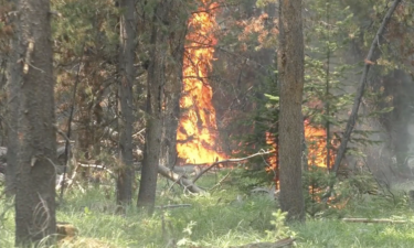 Goose Fire in Ennis, Montana