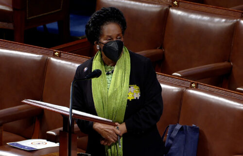 Democratic Rep. Sheila Jackson Lee said she was arrested on July 29 by Capitol Police during a protest on voting rights