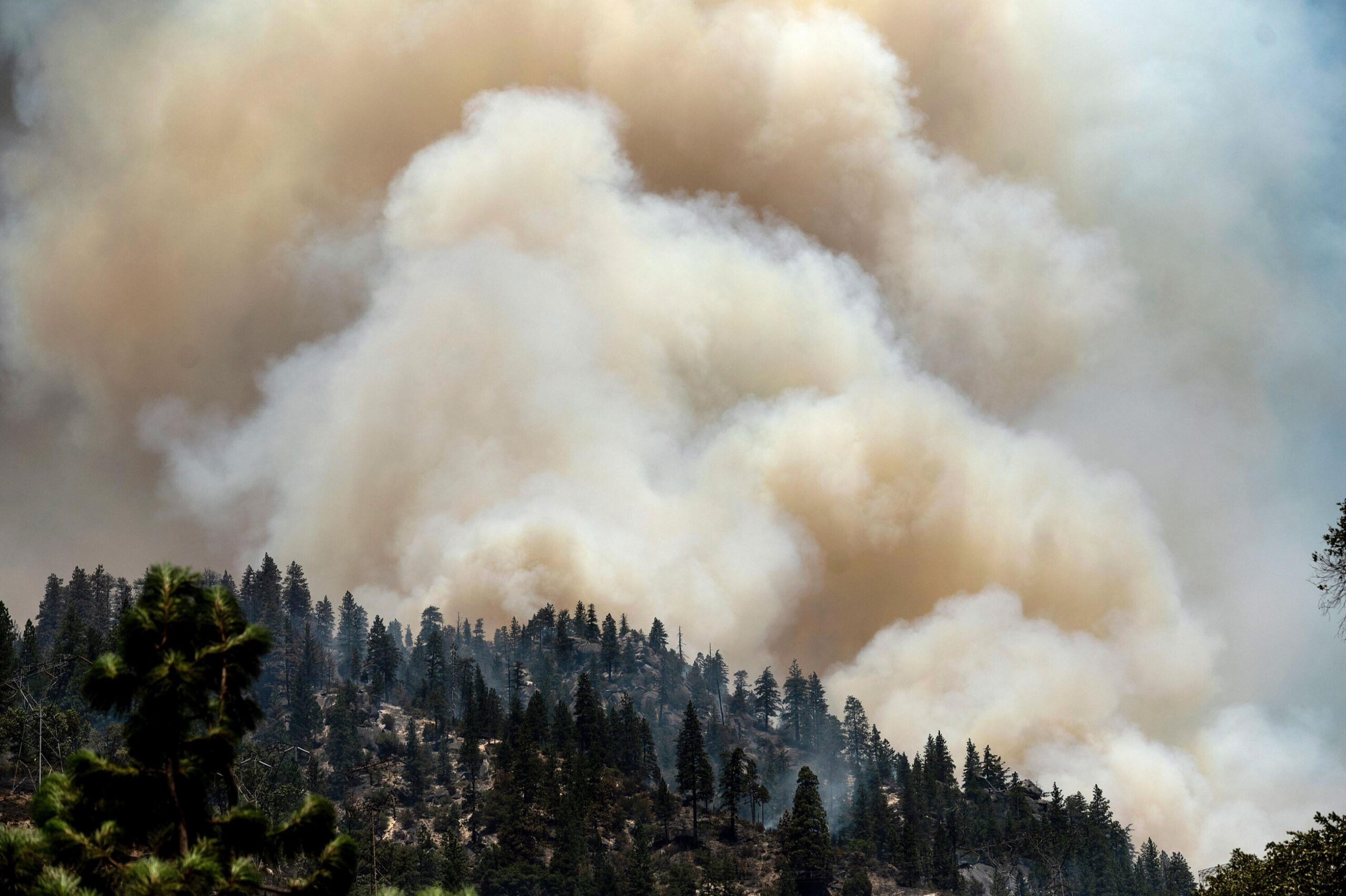 <i>Noah Berger/AP</i><br/>Smoke rises from the Dixie Fire burning along Highway 70 in Plumas National Forest on July 16. PG&E announced July 21 that it will bury 10
