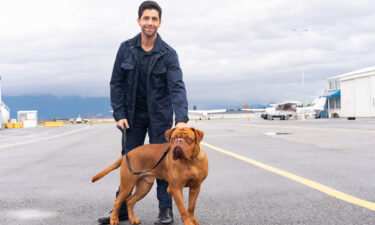 Josh Peck plays a US Marshal who inherits his dad's dog in 'Turner & Hooch.'