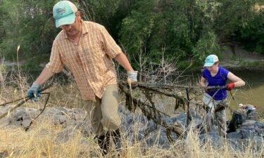 ISU Professor Colden Baxter picks up trash at Portneuf River Cleanup