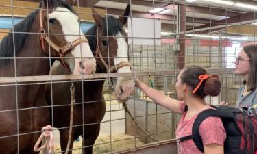 2021 Eastern Idaho State Fair