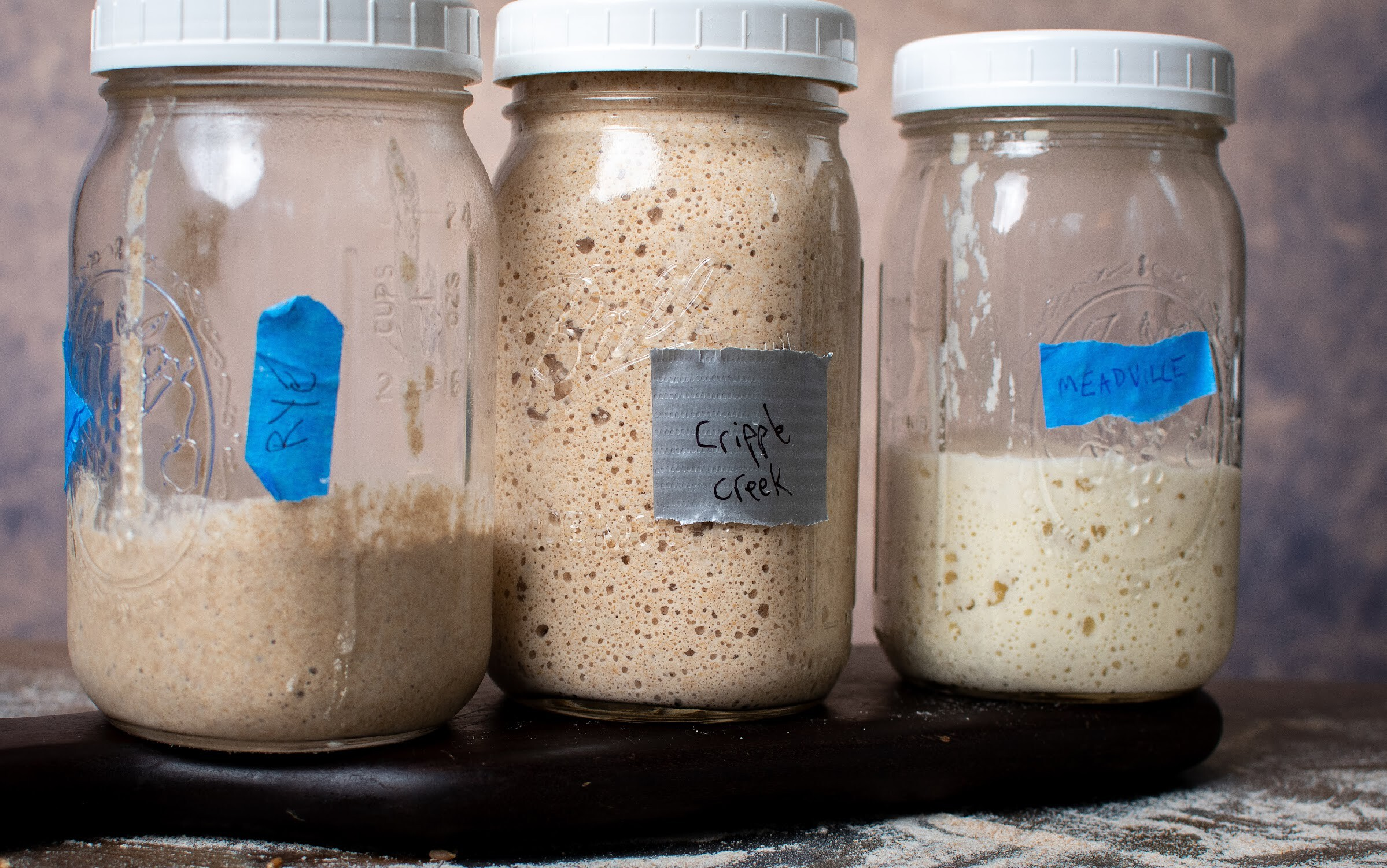 <i>John Mangine</i><br/>Making your own sourdough starter takes practice and patience.