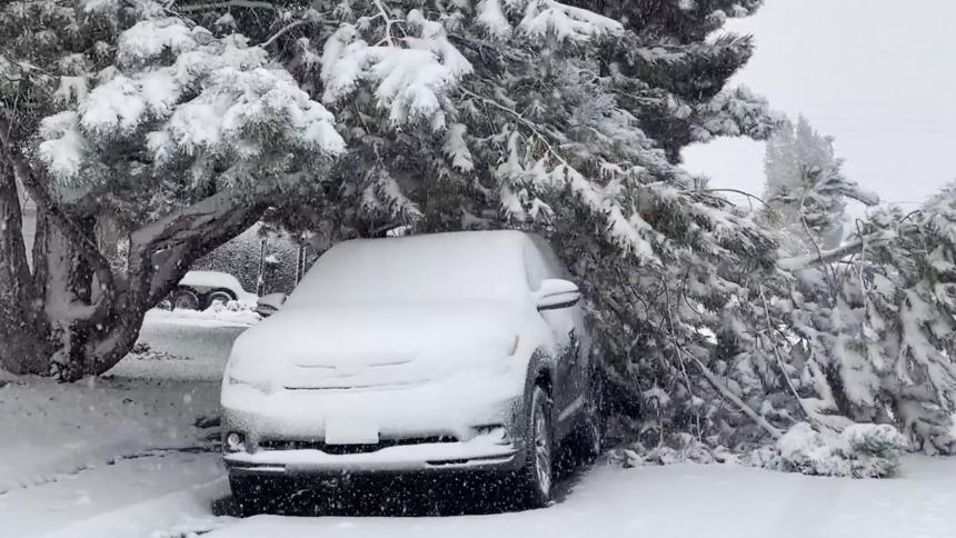 Snow causes damage across eastern Idaho Oct 12_4