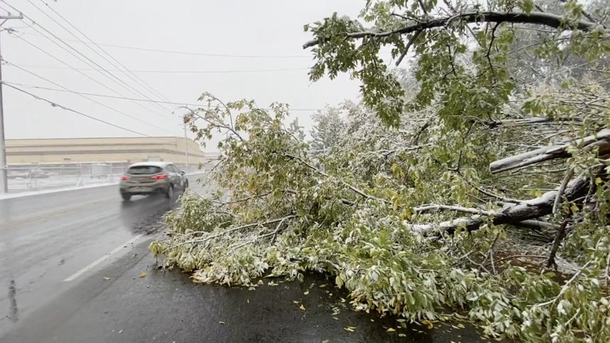 Snow causes damage across eastern Idaho Oct 12_5