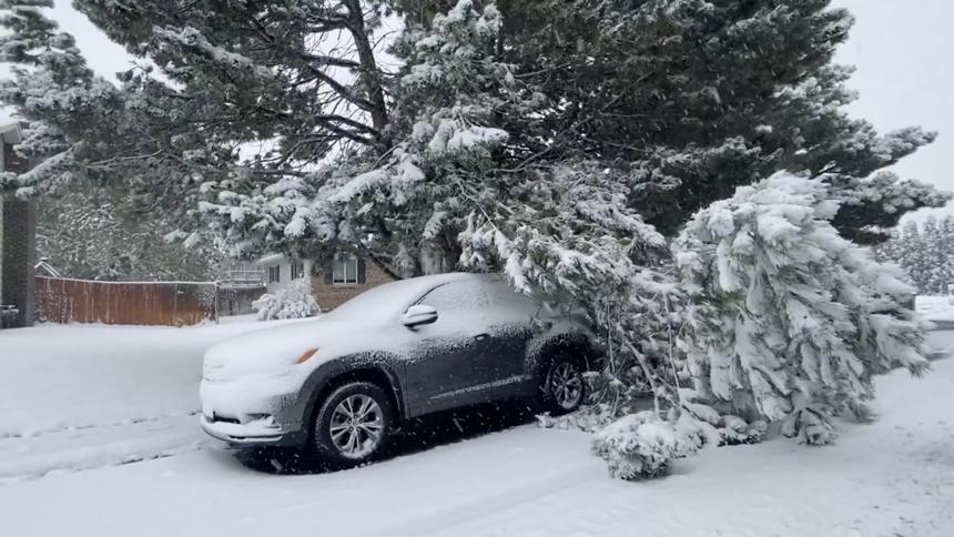 Snow causes damage across eastern Idaho Oct 12_7