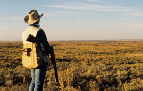 Idaho is the #5 state with the most registered hunters