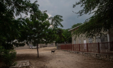 A goat stands in the courtyard of the Maison La Providence de Dieu orphanage it Ganthier